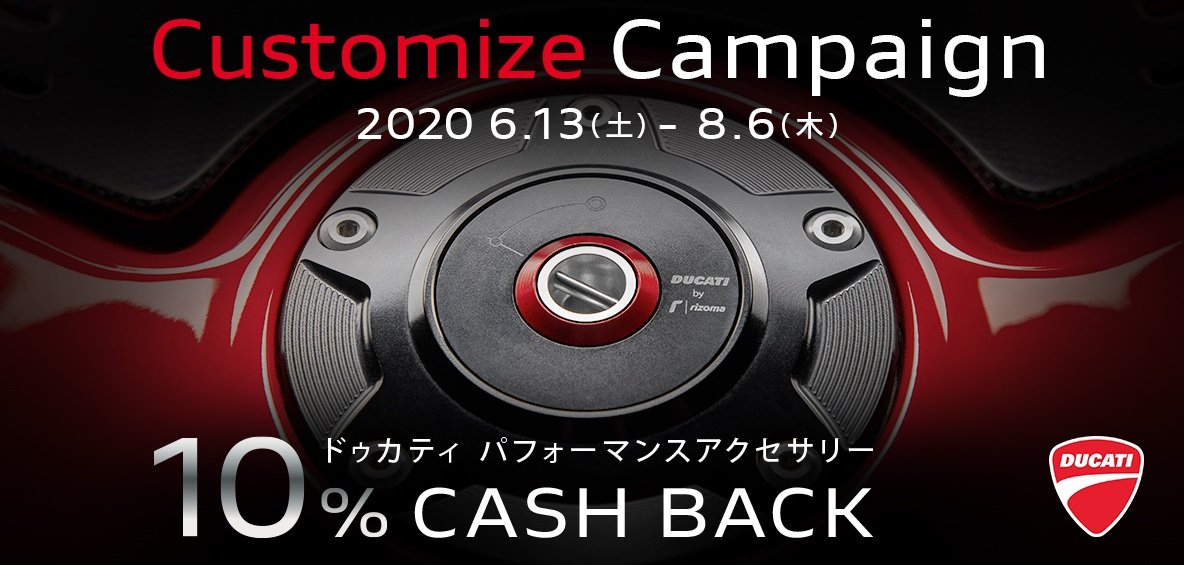 CUSTOMIZE CAMPAIGN 8/6